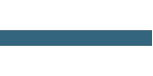 Topodrone Logo