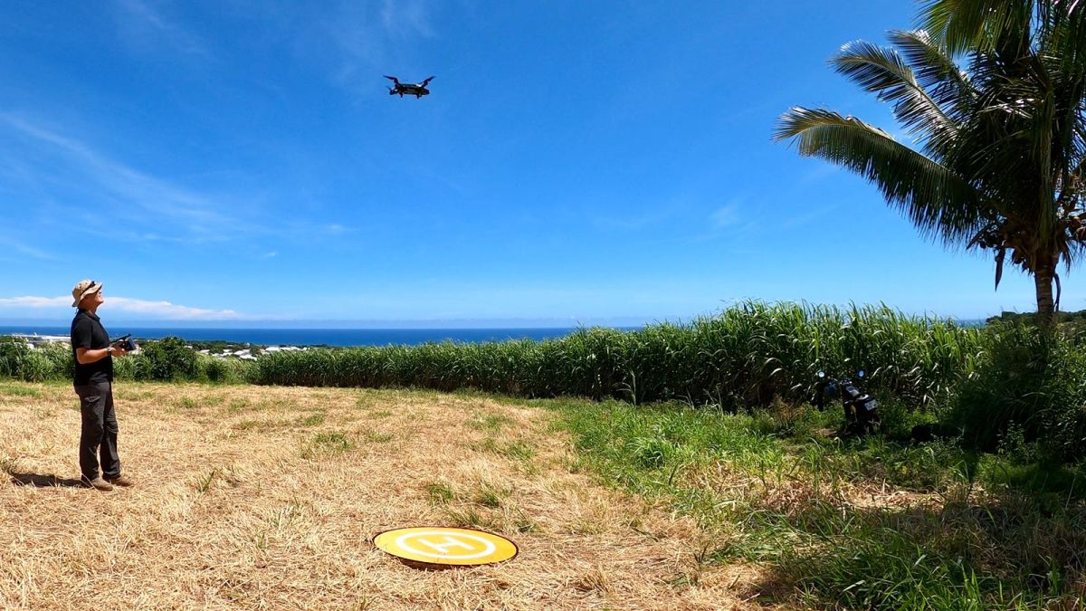Flying-an-agricultural-drone-ovre-a-field-of-sugar-cane
