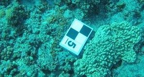 A ground control point placed upon a coral reef