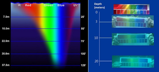 A diagram showing how colors are percieved underwater. Red falls off rapidly, and appears completely black at 20 meters. Only blue and green are clearly visable by a depth of 37 meters.