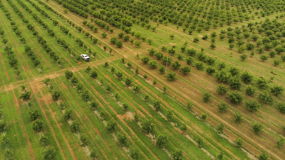 HEA BLOG AGR drone-mapping-high-value-crops-viticulture (1)