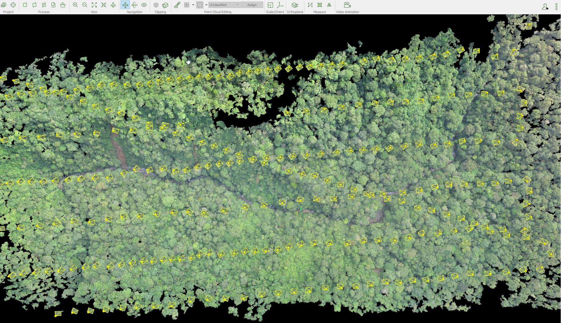 pix4d-pix4dmapper-environmental-monitoring-spider-monkey-ecuador-results-pointcloud-2