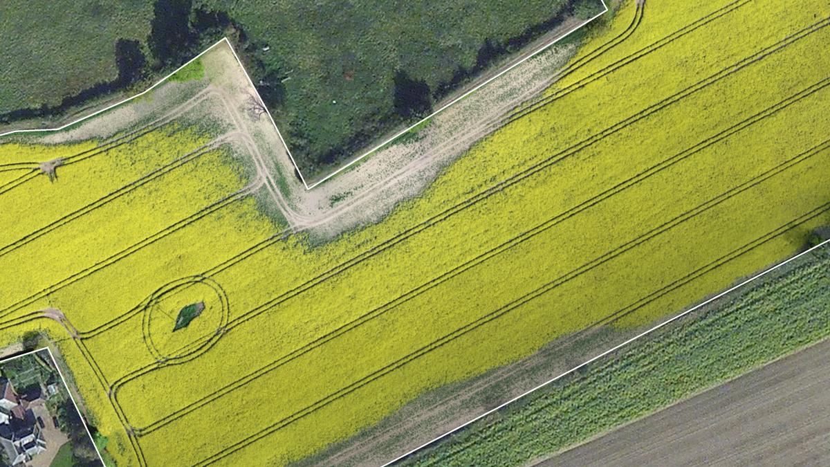 Karte, die Fasanenschäden auf einem Rapsfeld in Großbritannien zeigt