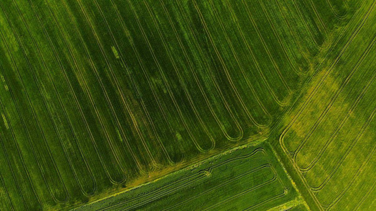 Pix4D Parrot Fields Bluegrass blogpost cover v1