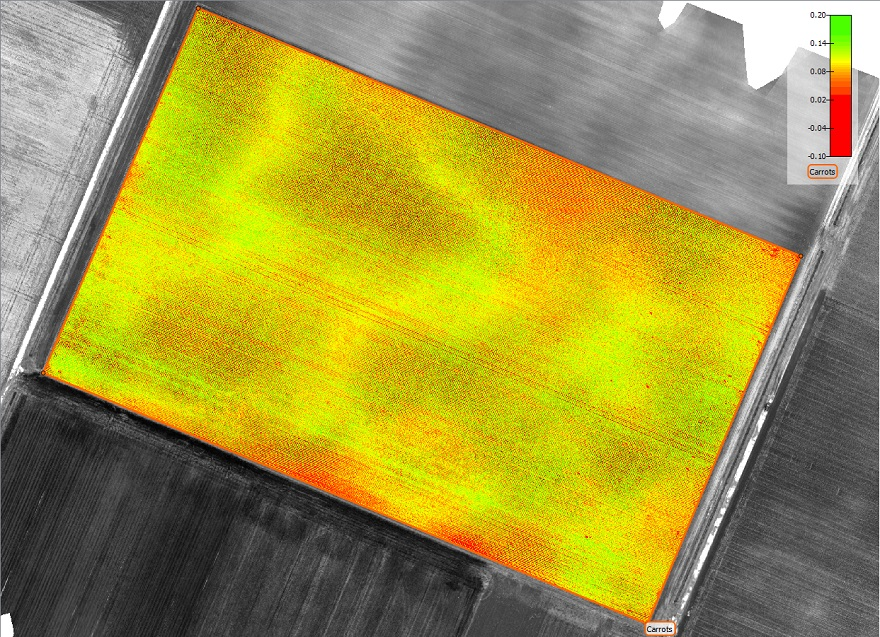Pix4D-agriculture-drone-mapping-carrots-01