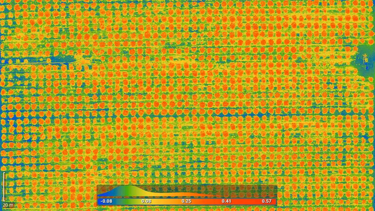 Thermal map of agriculture field created using drone mapping software in California