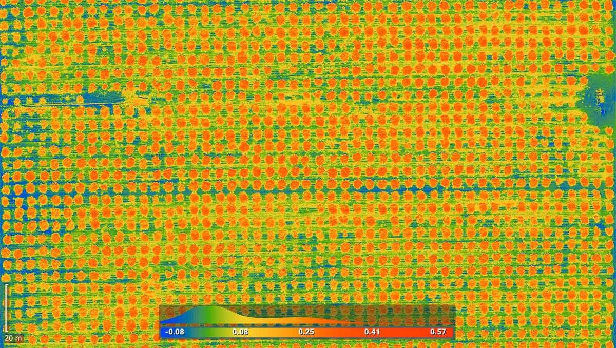 Mapa térmico del campo agrícola creado con software de mapeo con drones en California