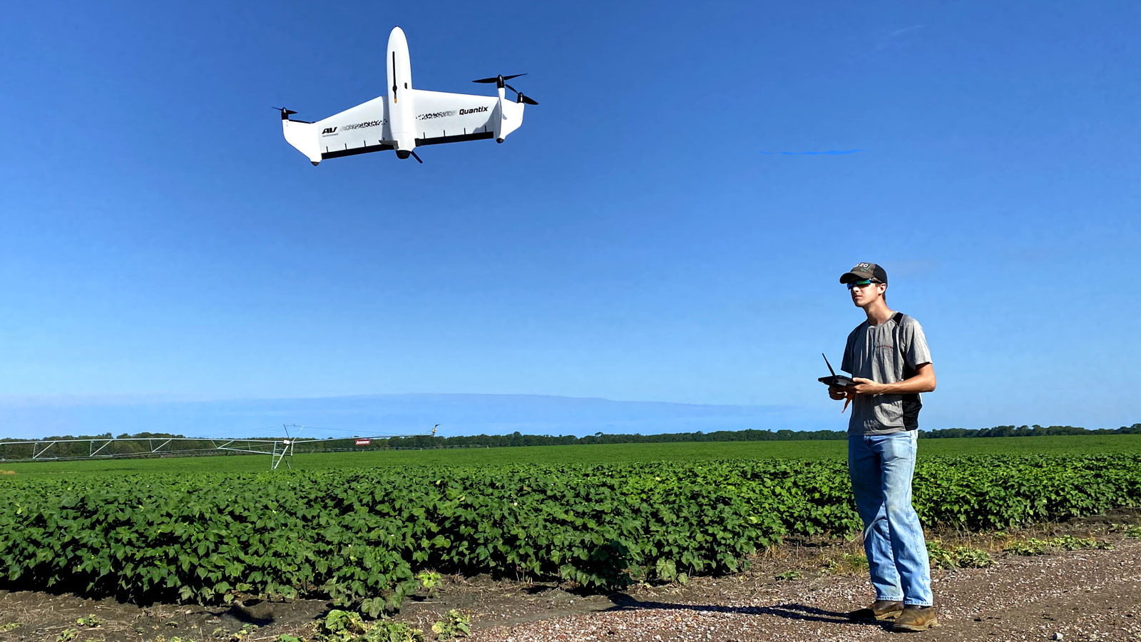 the Quantix Mapper drone flying over the cotton field