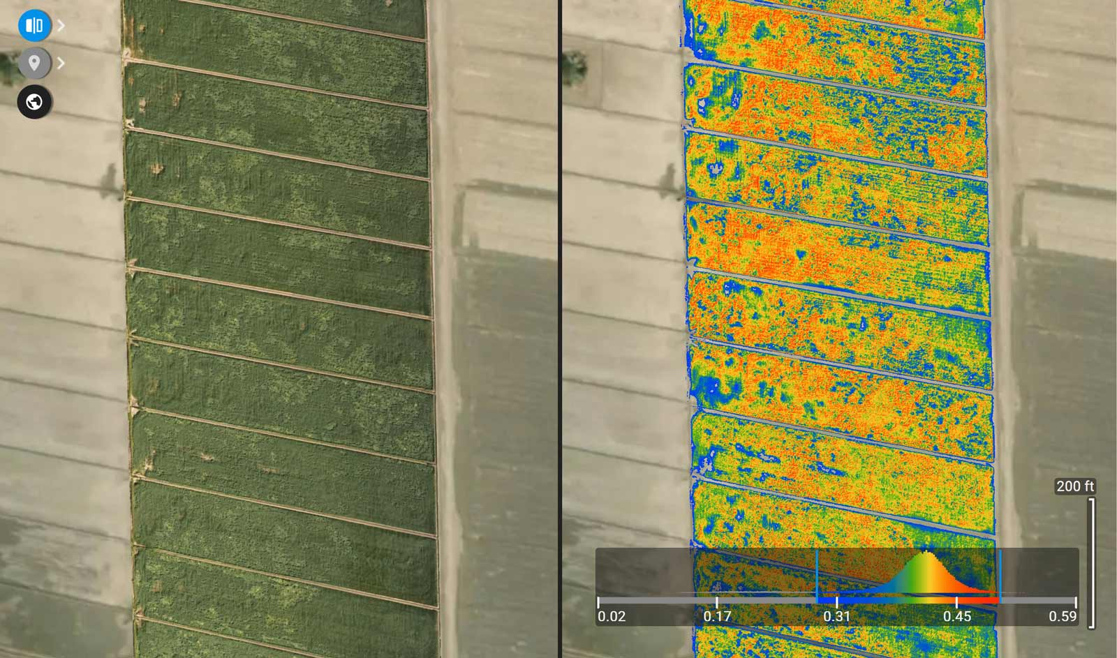 Comparison of the orthomosaic and NDRE vegetation index maps in Pix4Dfields