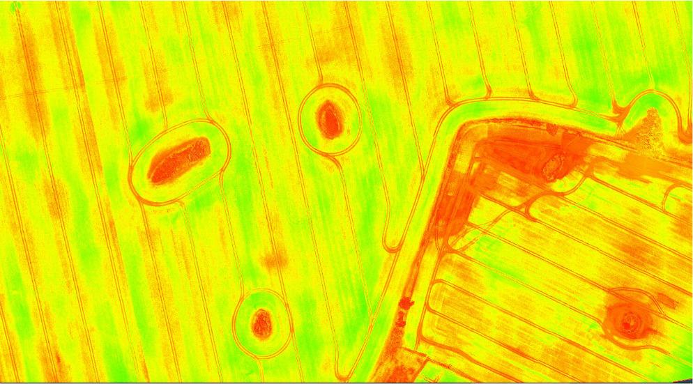 LCI – Leaf Chlorophyll Index