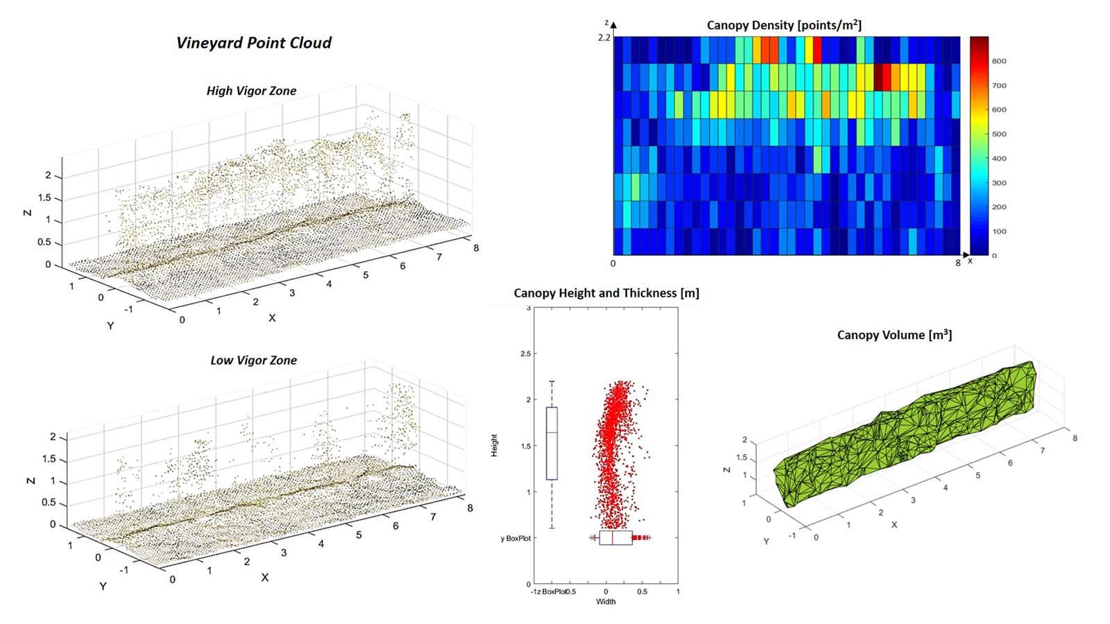 Bolgheri vineyard point cloud analysis