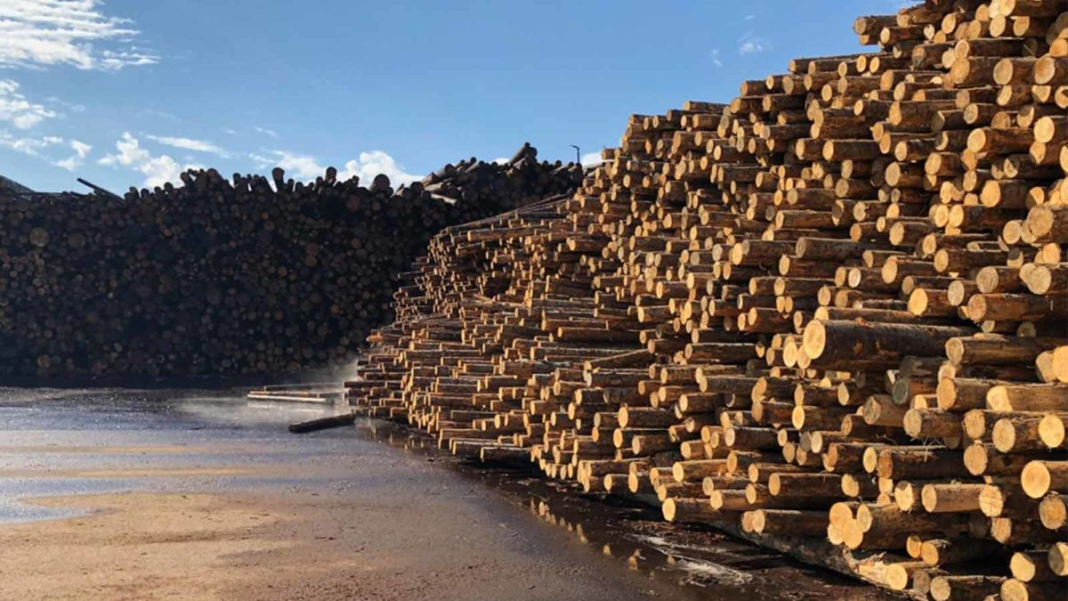 A-stockpile-of-timber-at-a-lumber-yard
