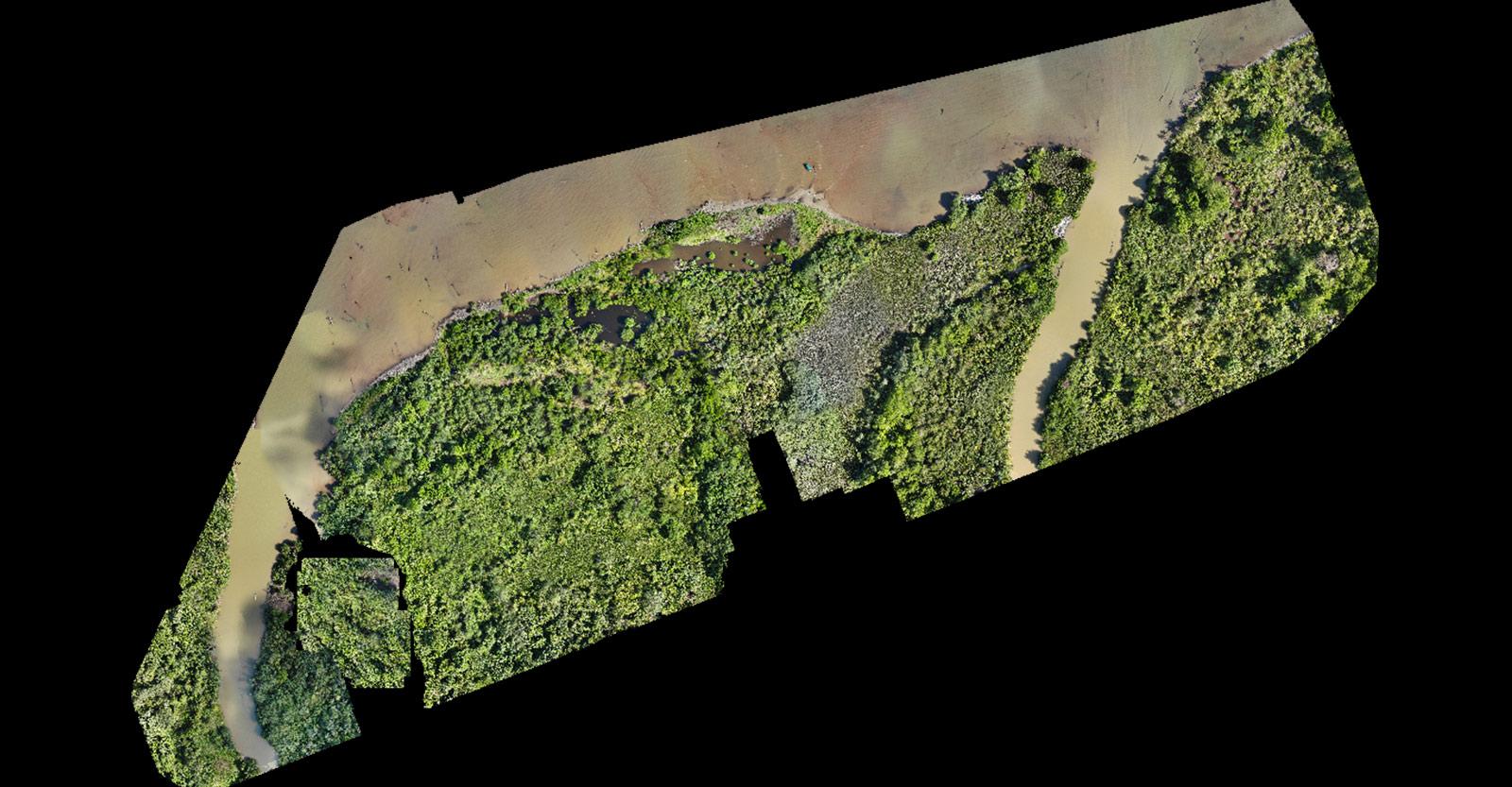 Uninhabited estuary in Panama