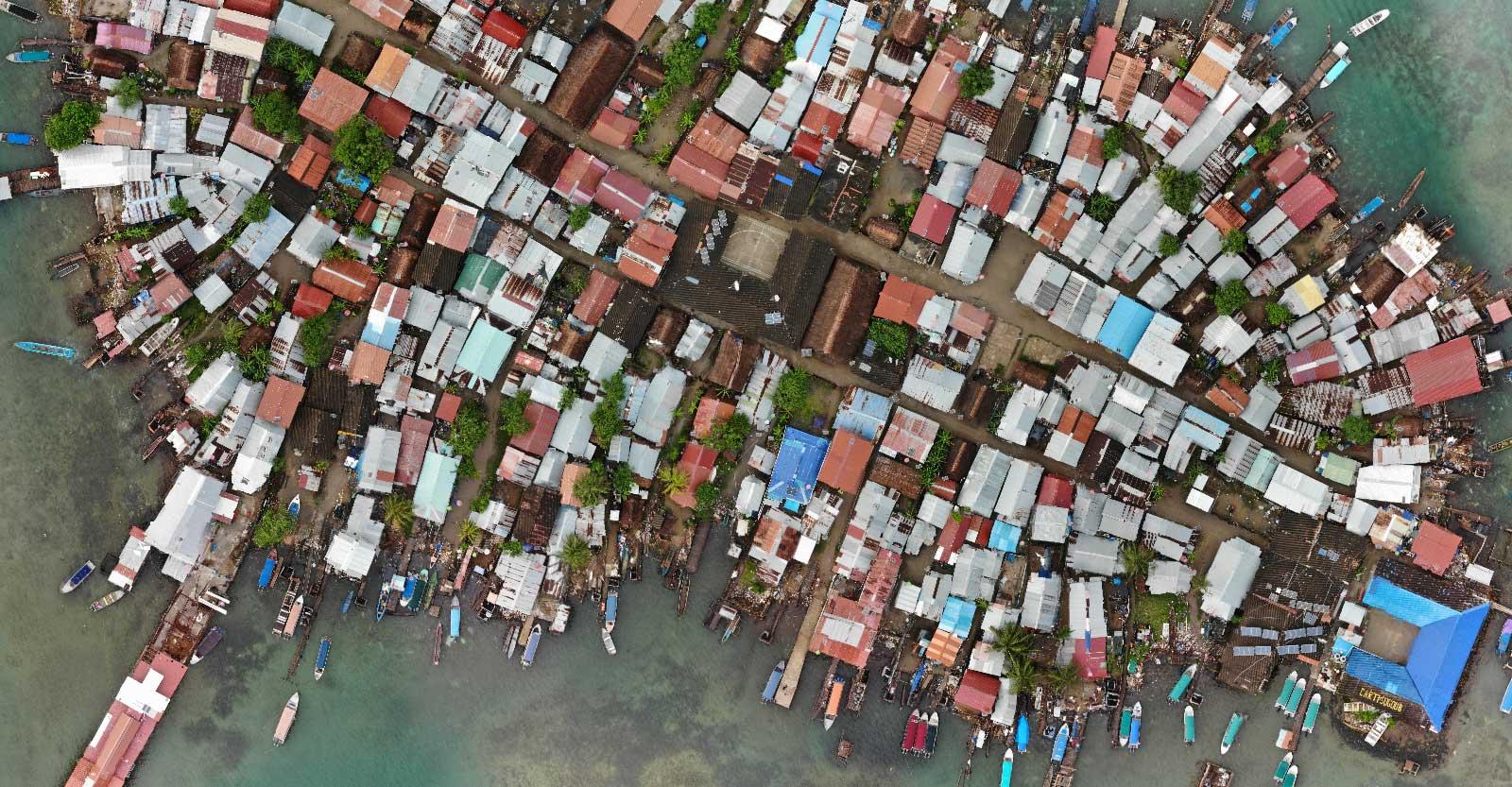 Overpopulated indigenous island
