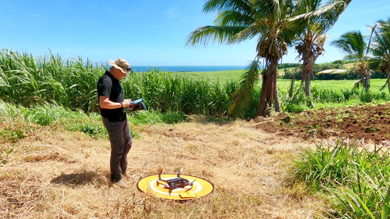 Flying Parrot Bluegrass drone over sugarcane crops in Réunion