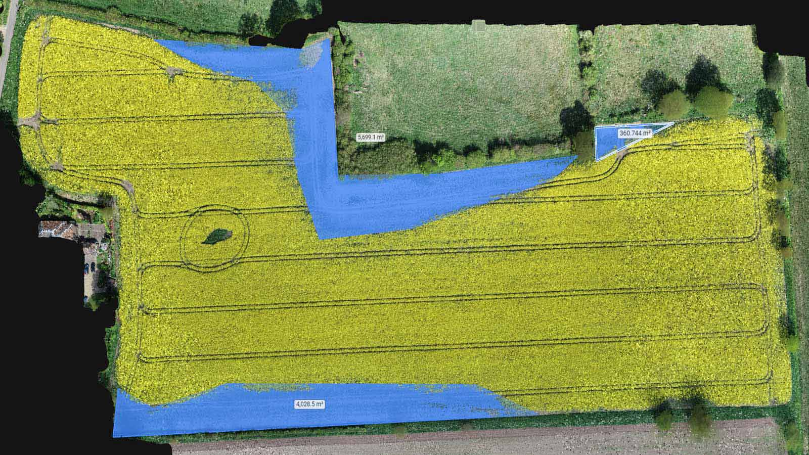 Bird damage in a crop field mapped with drones and precision agriculture