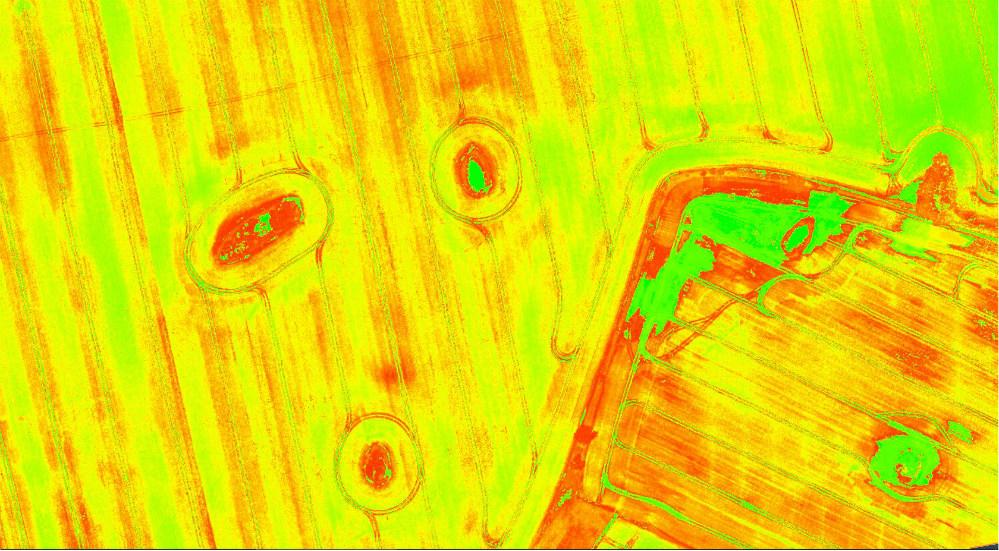 SIPI2 – Structure Intensive Pigment Index 2
