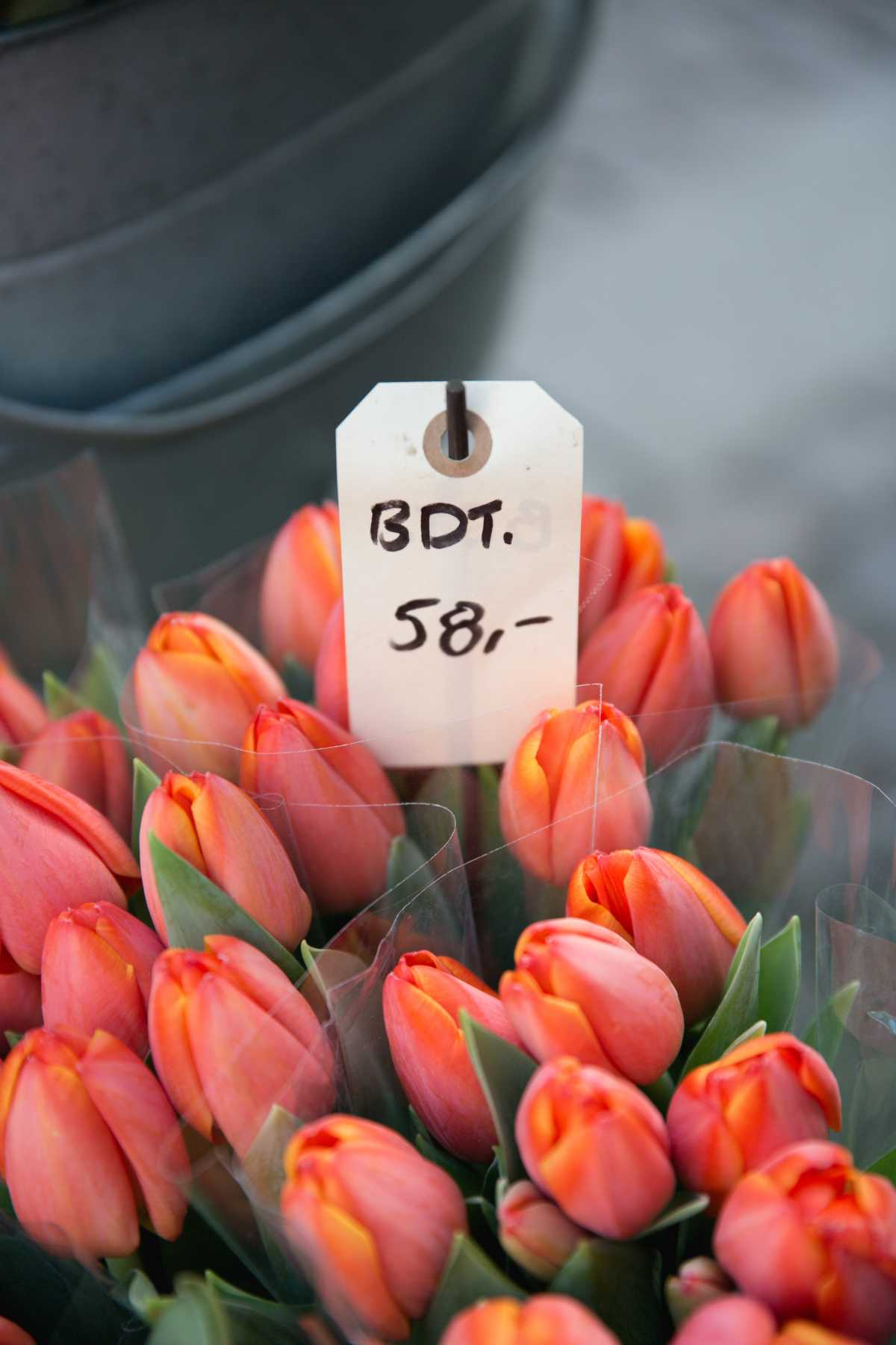 Orange tulips with a price sign saying BDT 58
