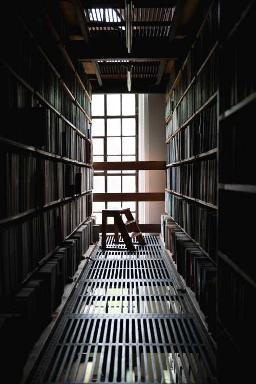 A dimly lit corridor in a library. Light is pouring in from a window at the end of the corridor. In the foreground, a small ladder.