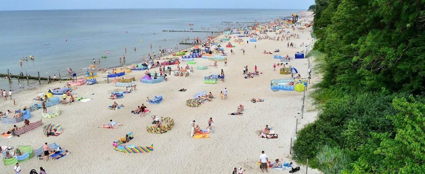 Plaża miejscem skandalicznej sytuacji
