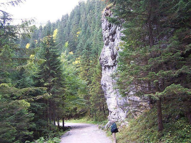 dolina-koscieliska-1614619760.jpg