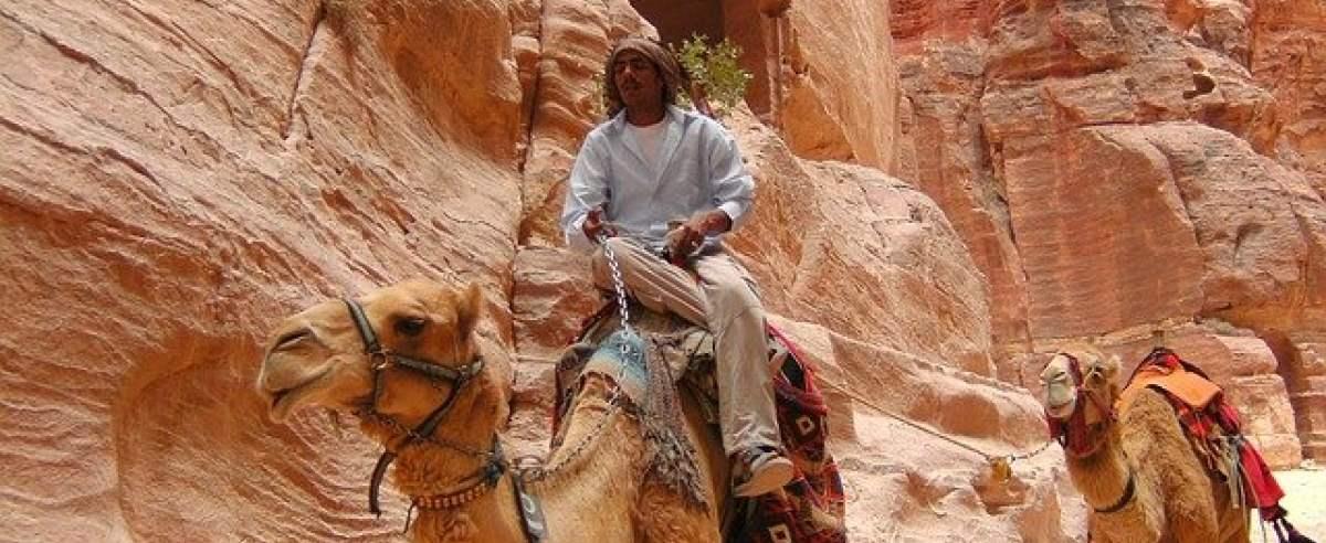 Polacy w Egipcie nie pojadą na wielbłądach