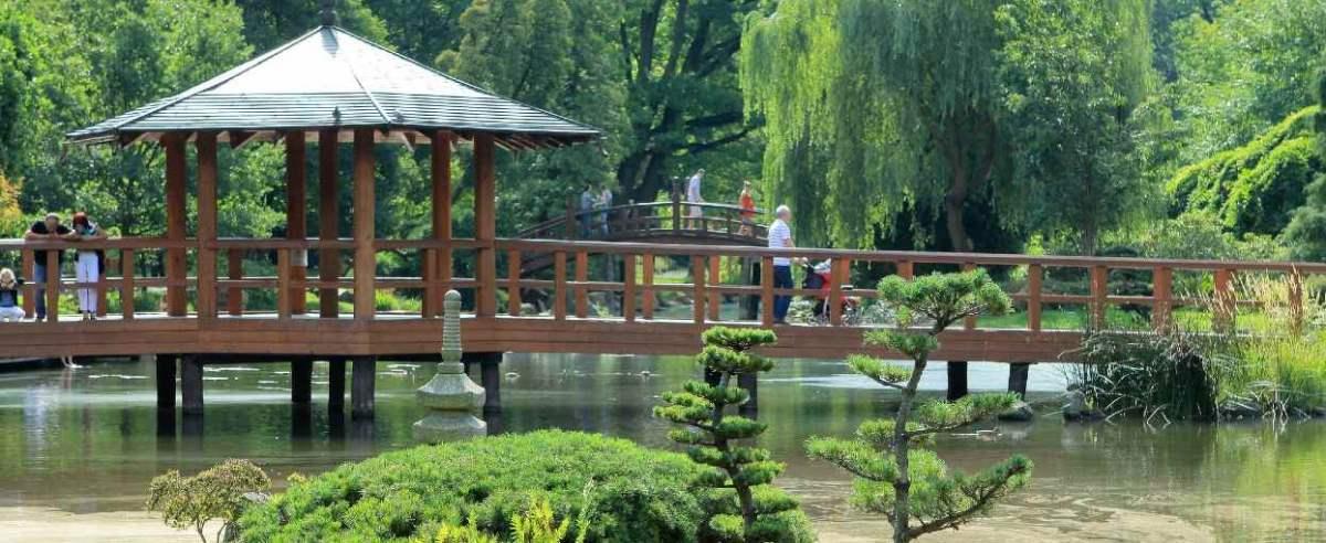 Ogród Japoński we Wrocławiu przyciąga tłumy
