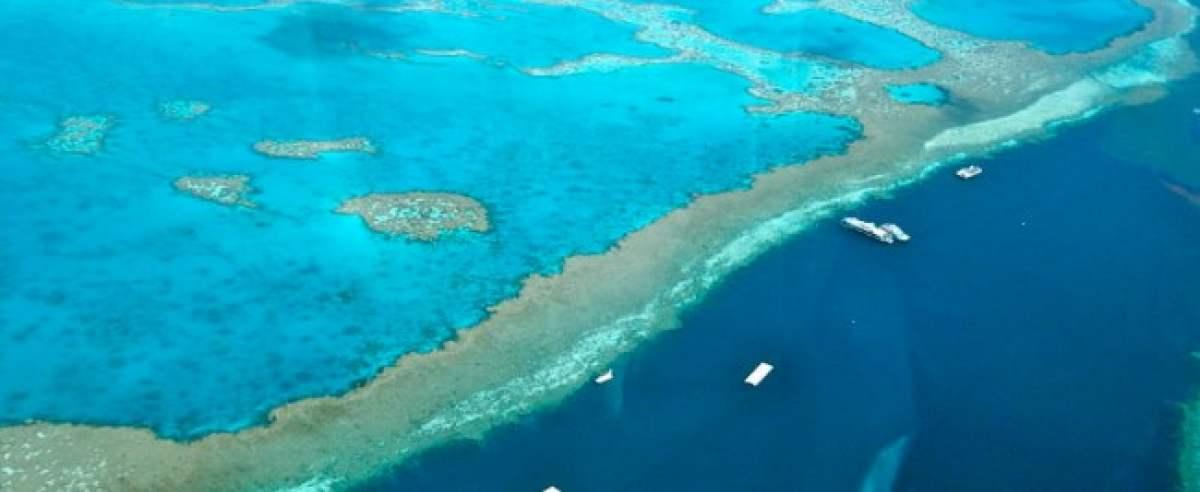 Australia zachwyca Wielką Rafą Koralową