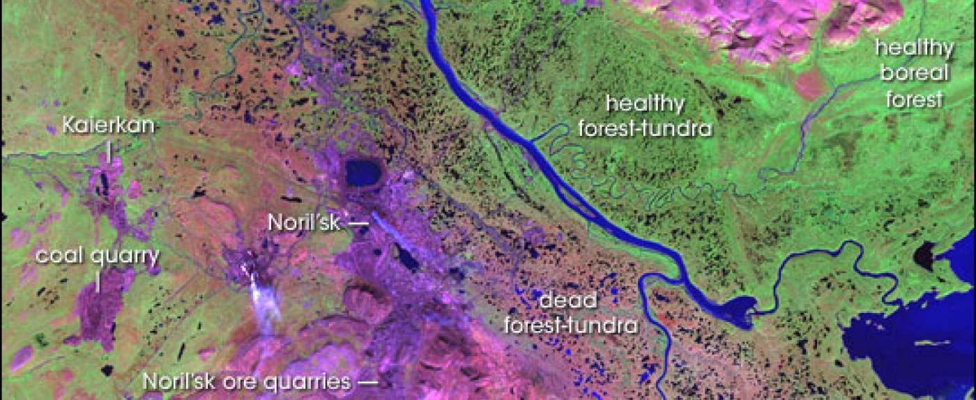 Katastrofa ekologiczna na Syberii