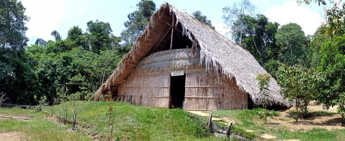 Brazylia i ayahuasca