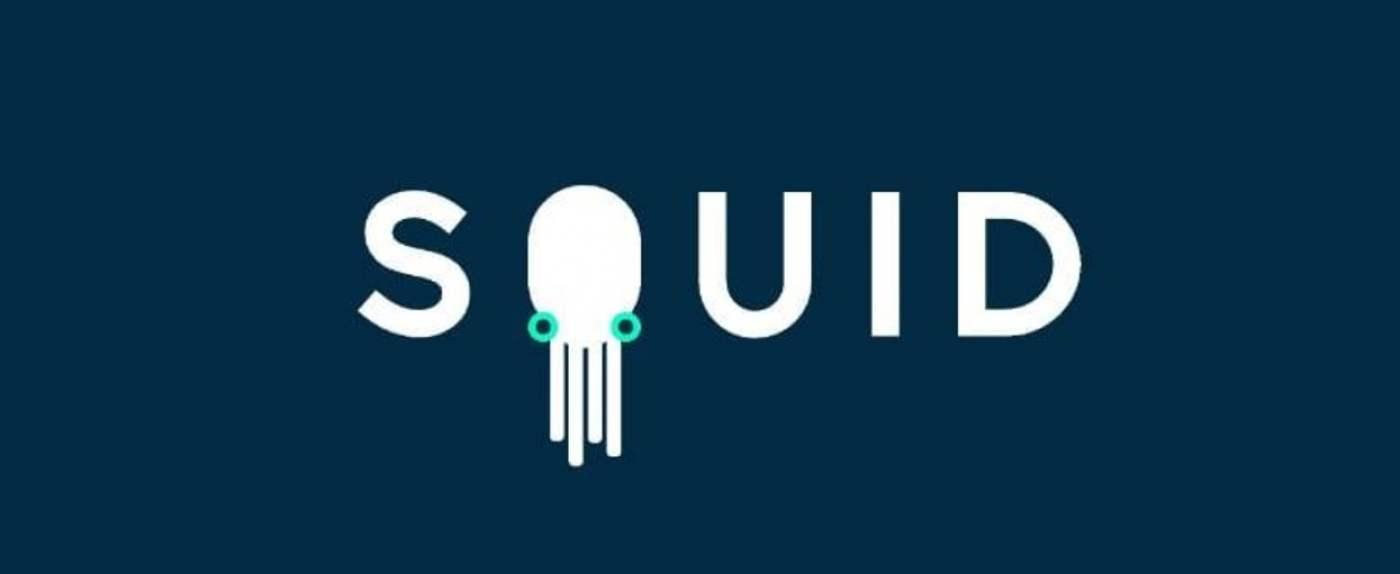 squid marka huawei