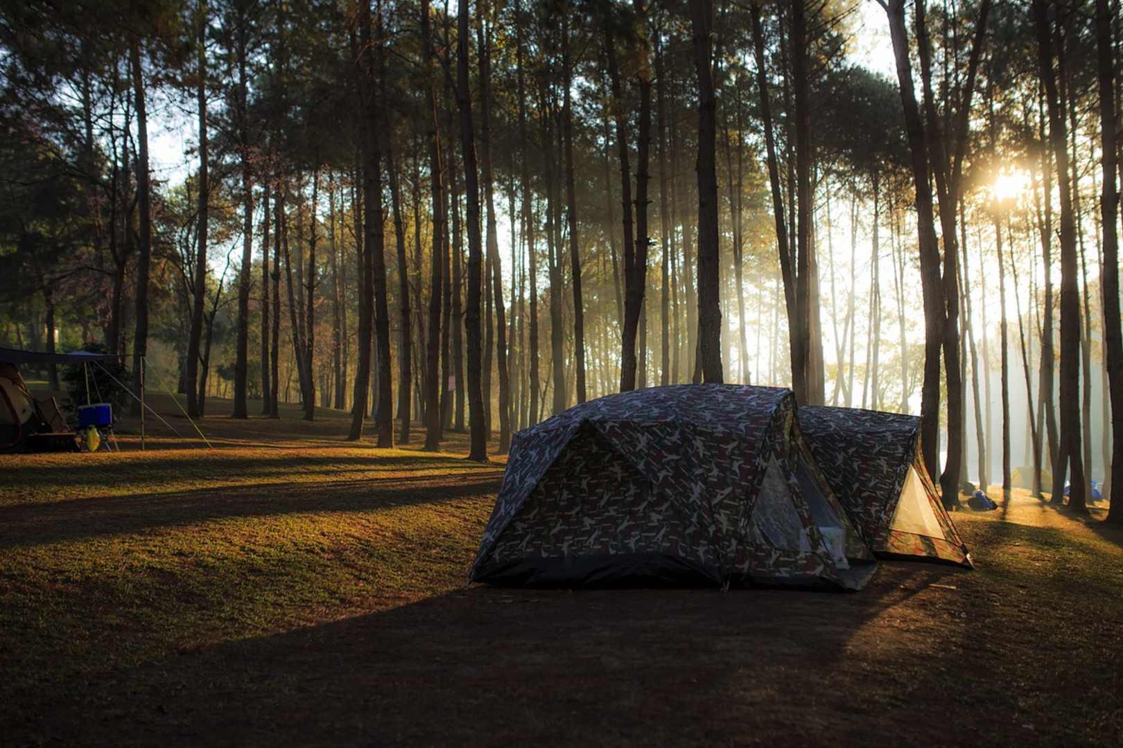 Turyści skorzystają z akcji Zanocuj w lesie