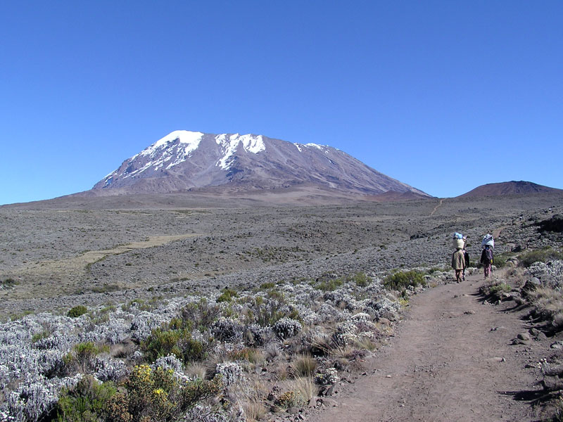 kilimandzaro-afryka-1614099526.jpg