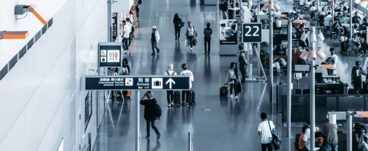 Lotnisko miejscem strasznych odkryć