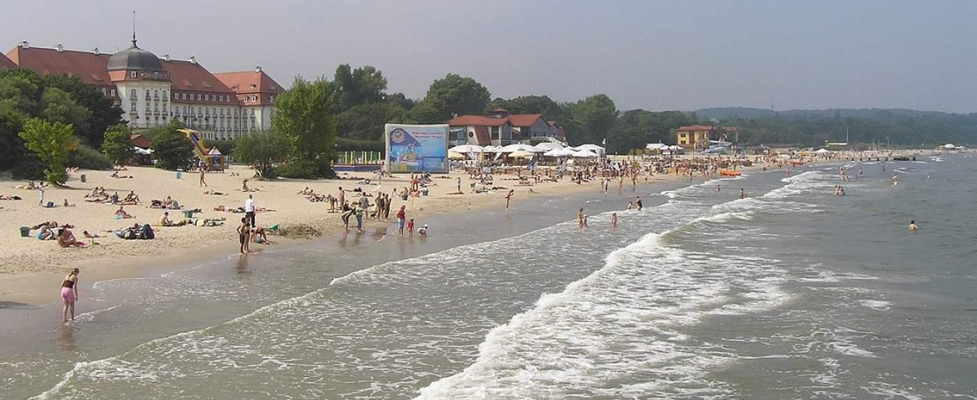 plaże znowu sinice