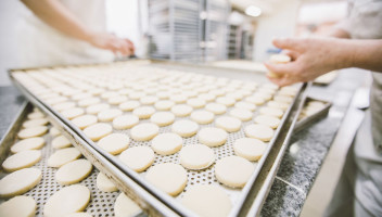 dough on trays