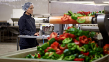 Woman on computer next to bell peppers on conveyer