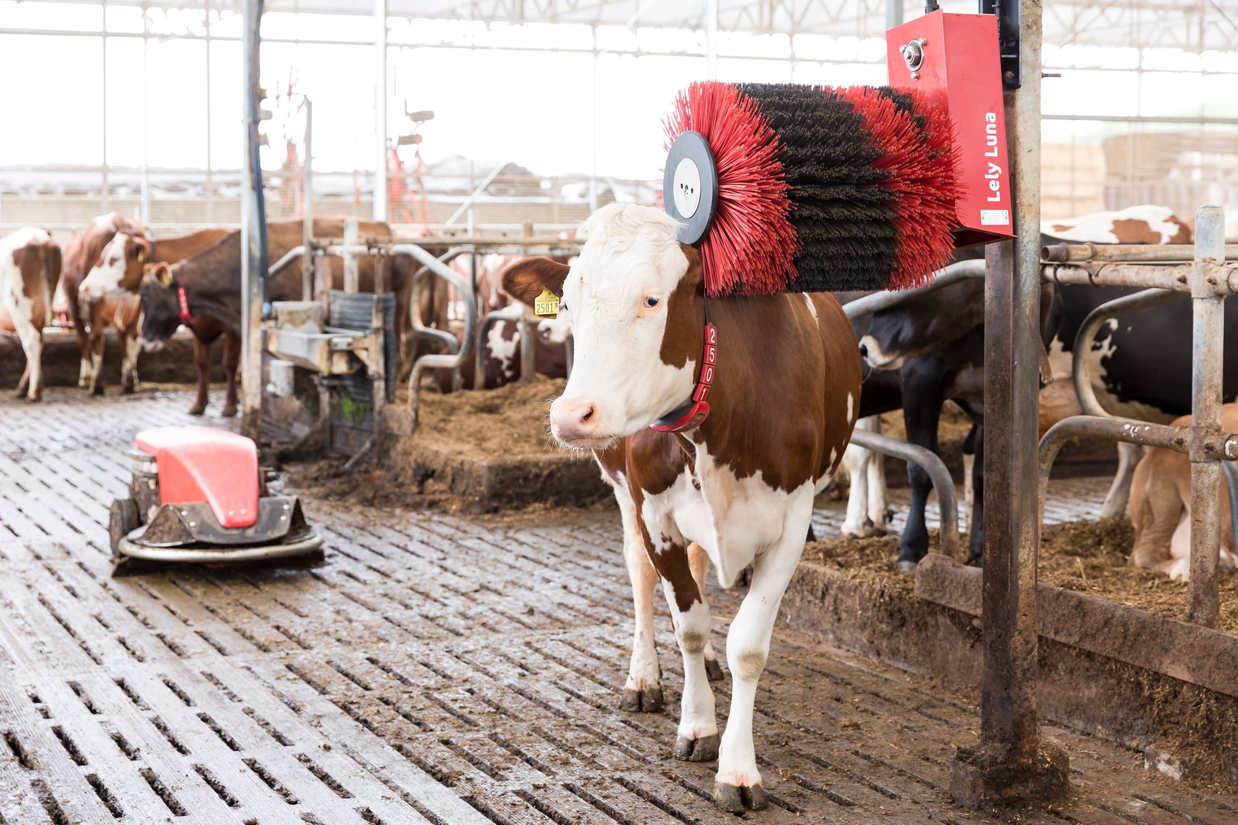 Lely Pre-owned