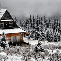 Winter Cabin Rentals In The Usa Vrbo