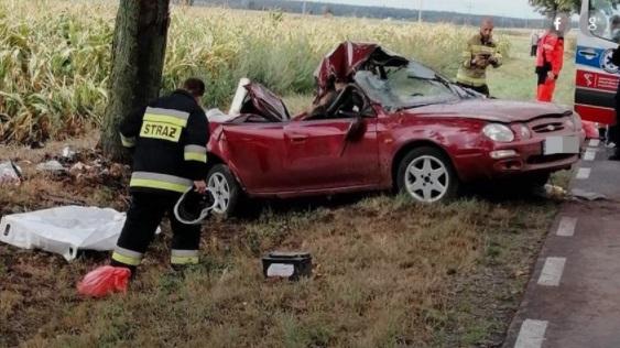 Wypadek pod Szamotułami. Nie żyje 11-latek