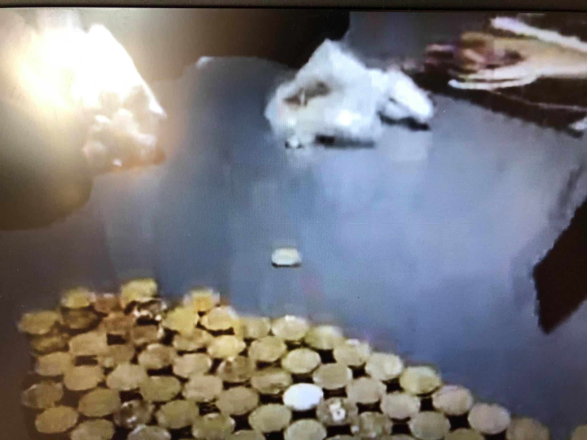 Chiny zapłacił za BMW w monetach