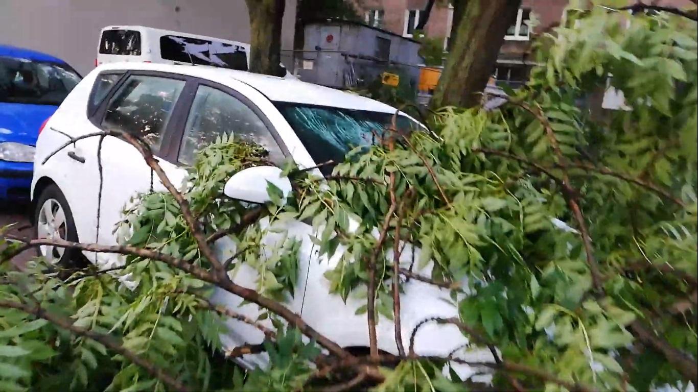 Ubezpieczenie auta - uszkodzenie po nawałnicy,  jak dochodzić odszkodowania?