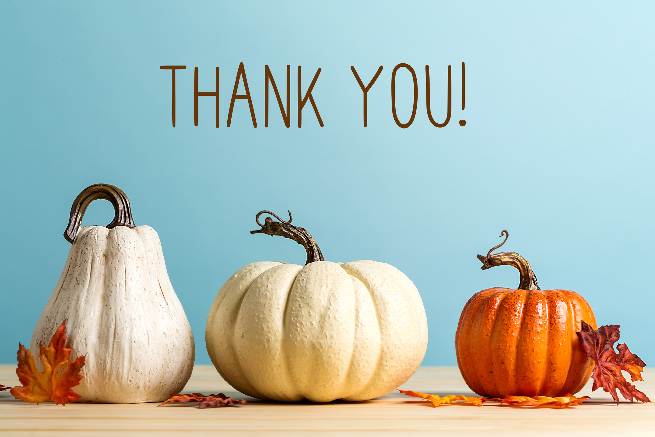 Pumpkins and gourds with a thank you message.