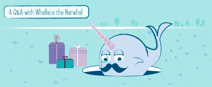 A Narwhal's Guide to Savvy Holiday Shopping