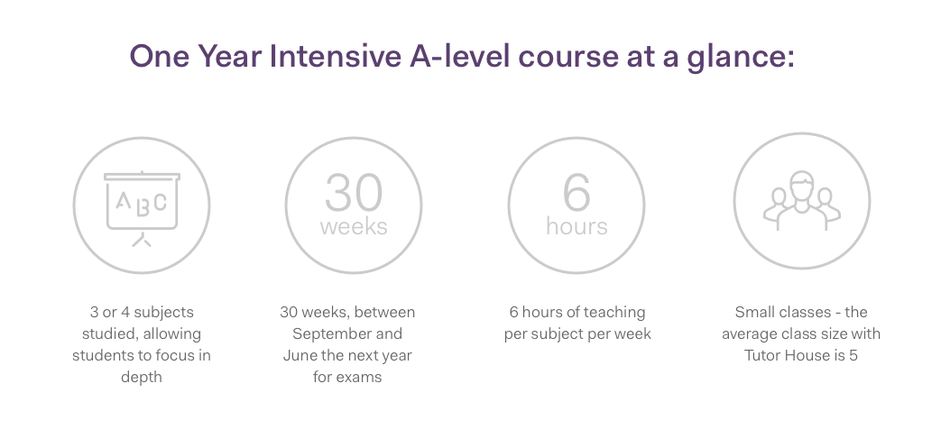 One-year-intensive-course-summary-image