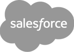 Salesforce Grey
