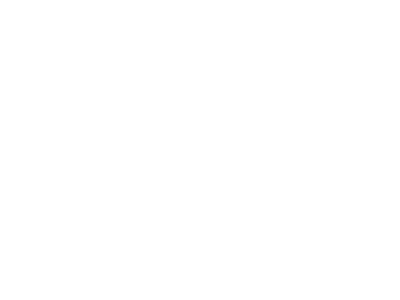 Zillow (White)