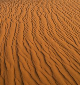 Rippled browns desert sands