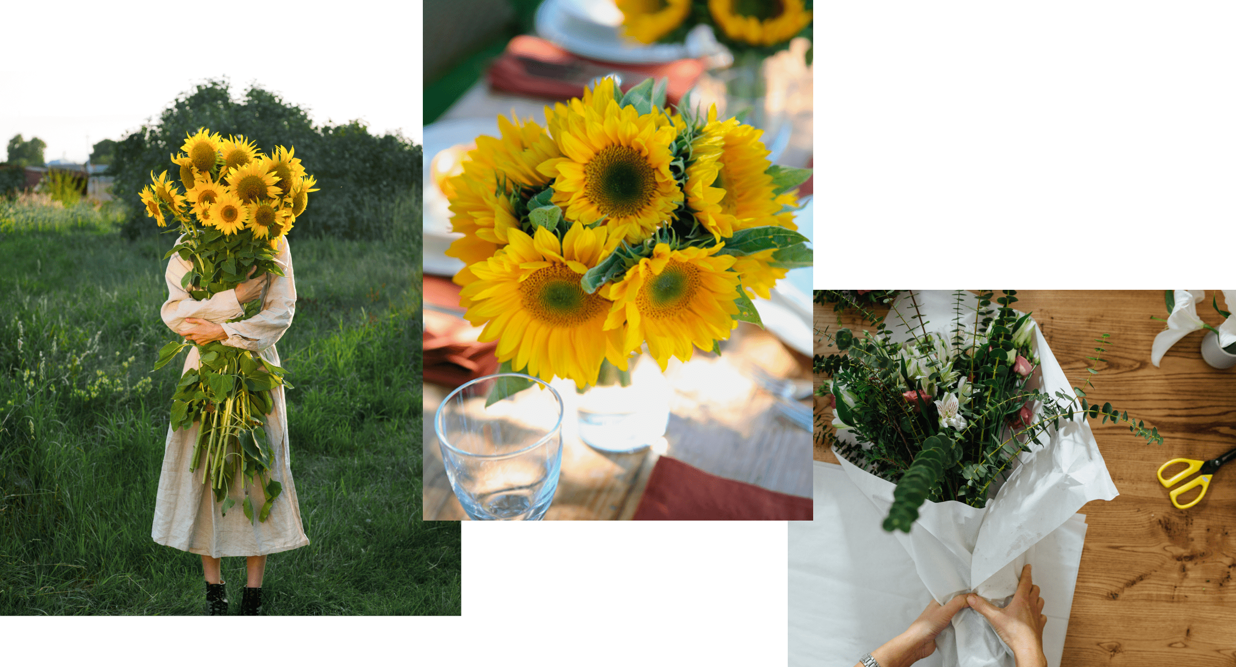 Three photos depicting arrangements of yellow flowers and green foliage