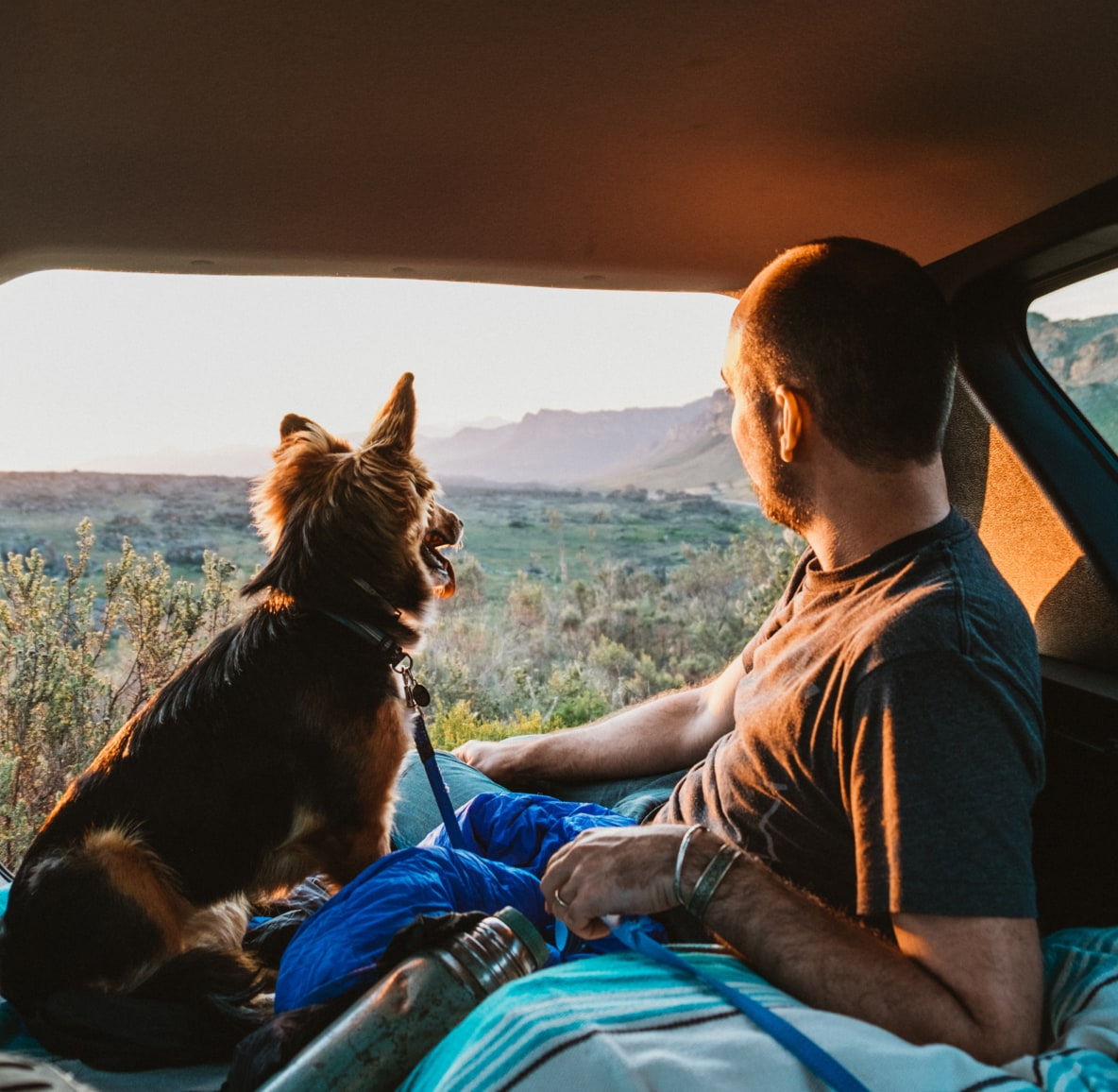 Man on a car camping trip with his dog as they look out the window at mountains
